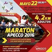maratonap16
