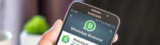 Whatsapp-Business5
